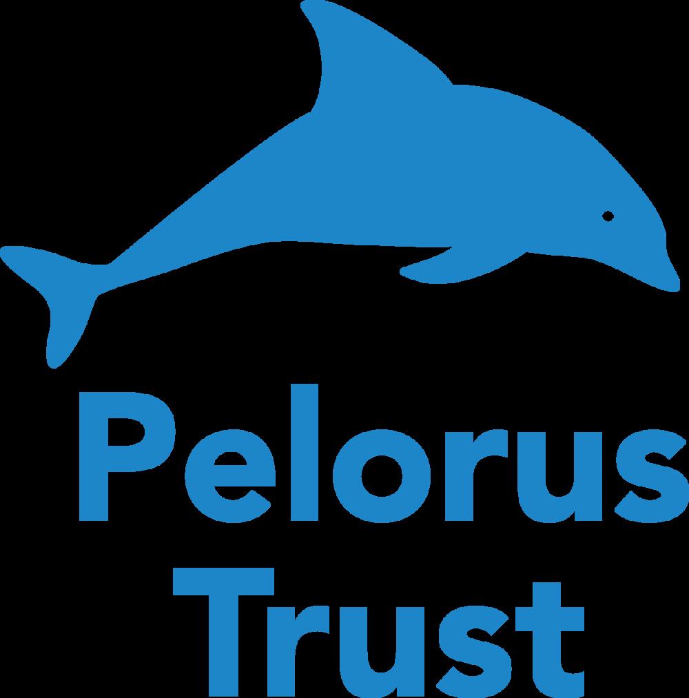 PelorusTrust_Blue_Logo.png