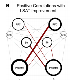 Thicker lines means more increase in connection. L: left-brain, R: right-brain. PFC: Prefrontal cortex, Str: striatum, Parietal: well, you know.