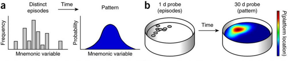 Figure 1. Distinct experiences morph into a statistical model. The warmer the colour, the higher the probability of the platform appearing.