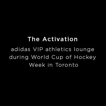 ADIDAS-theactivation.jpg