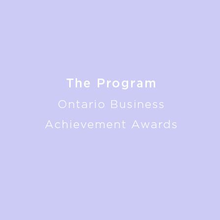 OBBA-theprogramjpg