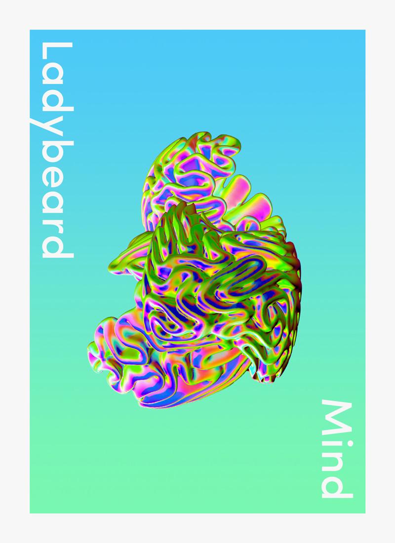 ladybeard-cover.jpg