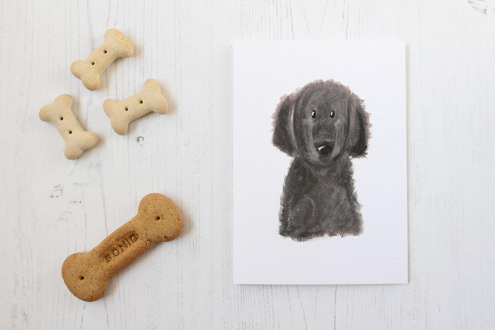 ?? Dog Styled3.jpg