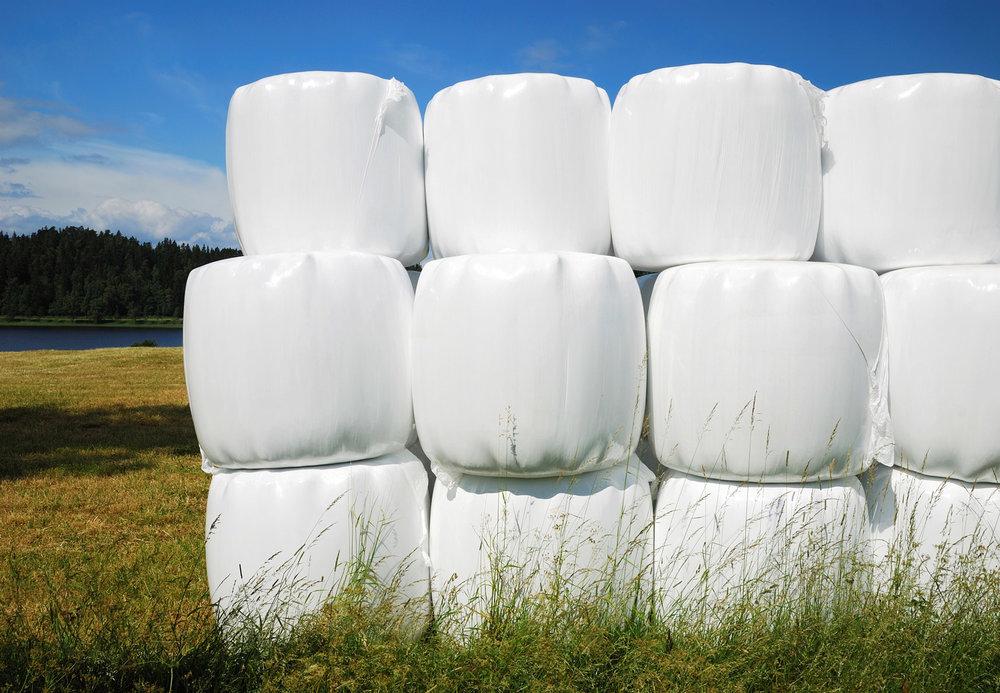 FP_Wrap-haystack.jpg