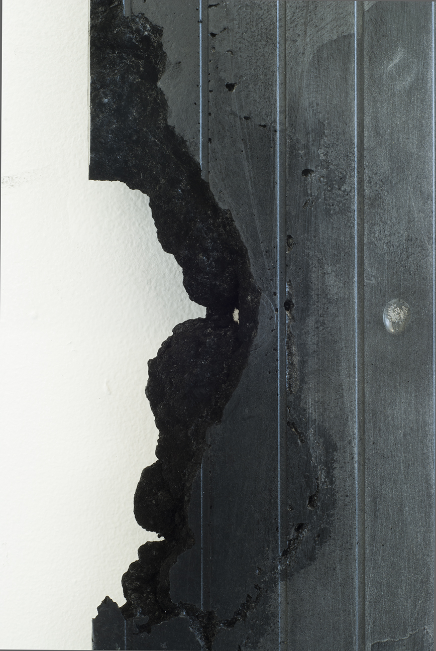 Carbon Form Diptych detail 3.jpg