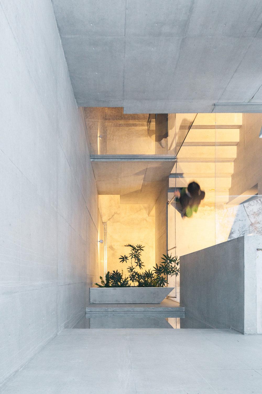 Tree-ness-House-Toshima-Japan-by-Akihisa-Hirata-Yellowtrace-19.jpg