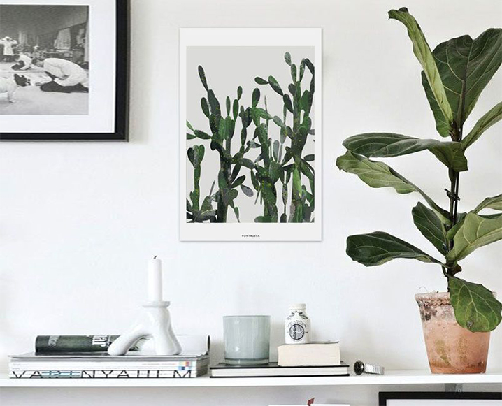 11 low maintenance plants to transform your office bond for Hearty low maintenance plants
