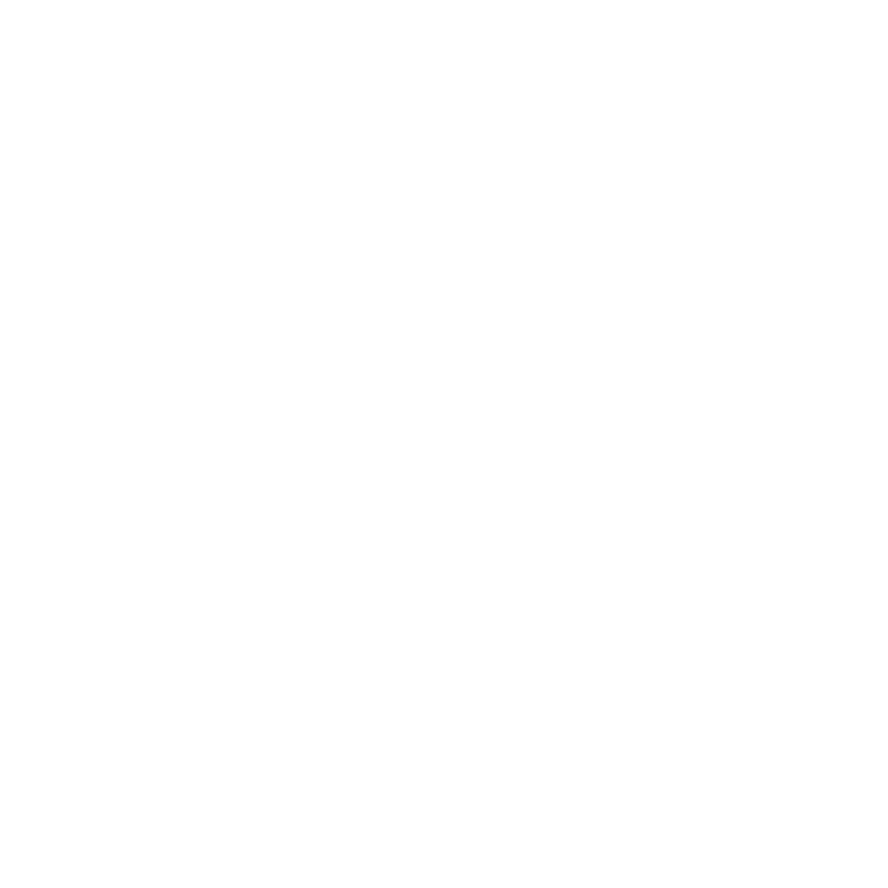 The Social Care Company