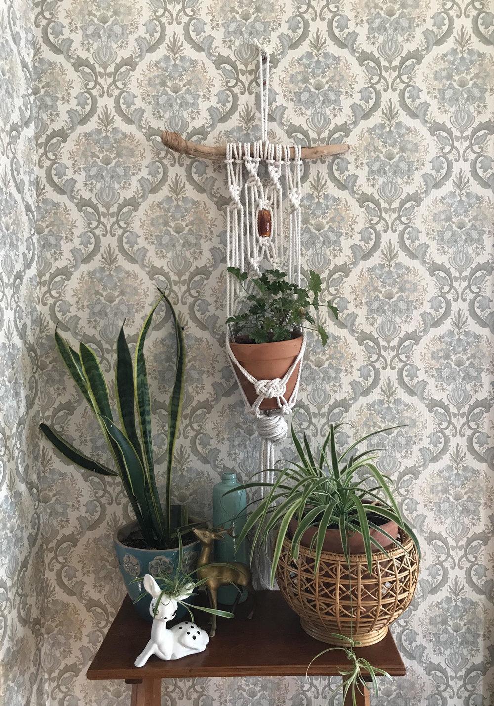 Chunky Macrame Plant Hanter.jpg