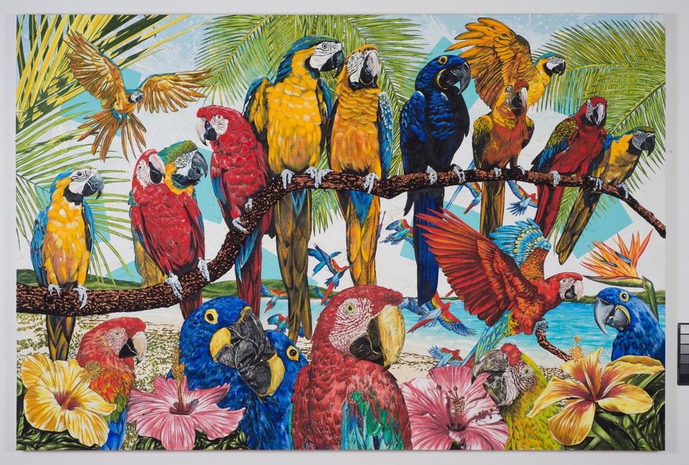 John Newsom 2016 Primary Paradise 78.75 x 118.jpeg