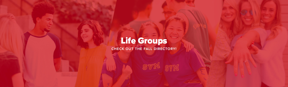 Click To Explore the Life Group Options this Fall!