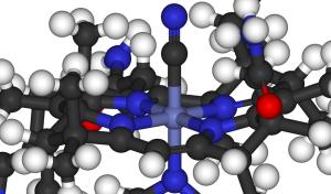 vitamin-B12-300x176.png