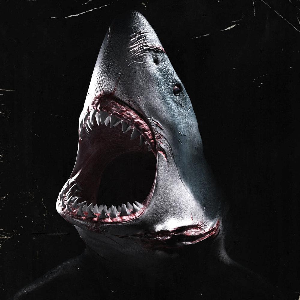 Sharkfinal.jpg