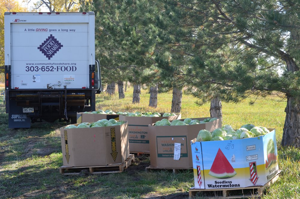 Donate your surplus. Receive a tax credit. - UpRoot will respectfully facilitate the gleaning of surplus crops, safe transport to hunger-relief agencies, and ensure you receive a tax-credit certificate from the regional Feeding America food bank.