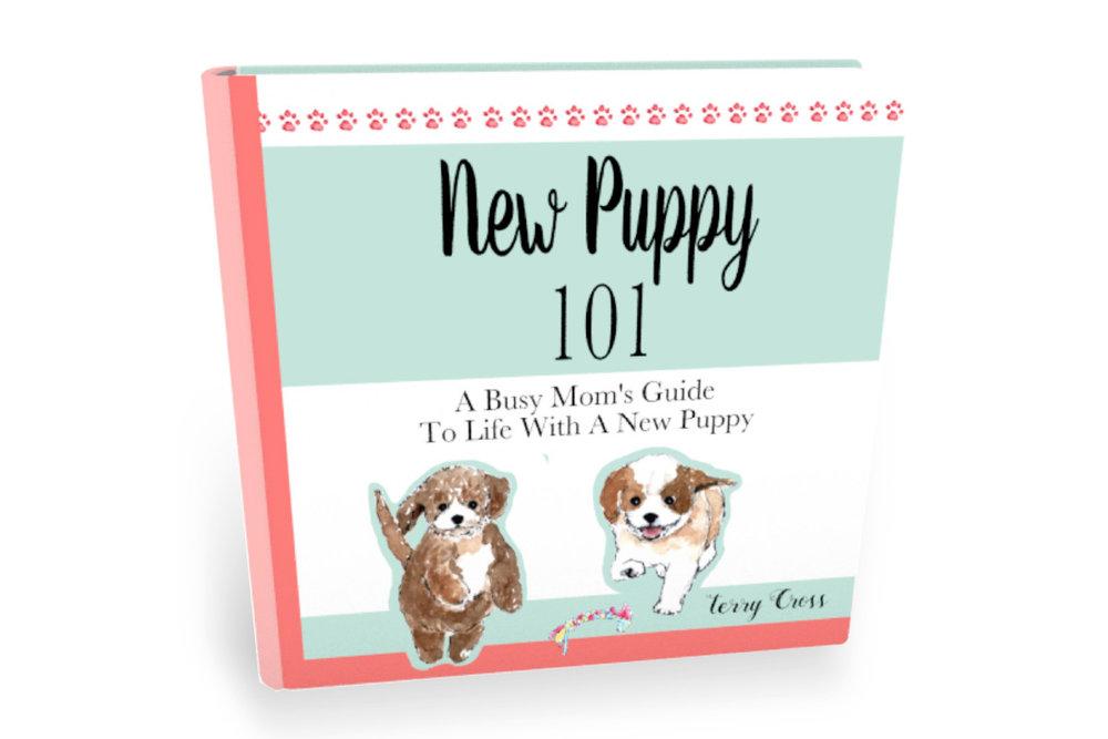 New Puppy 101