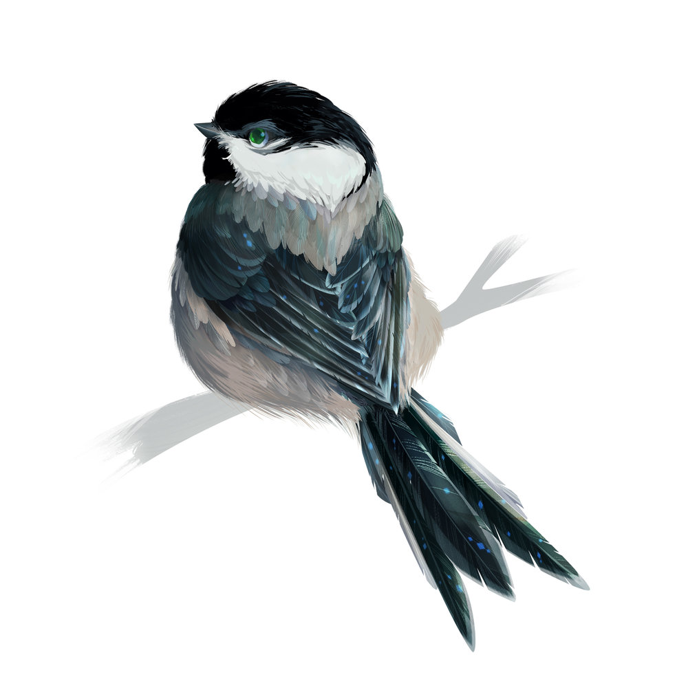 W_Birds_Print_Chikadee.jpg