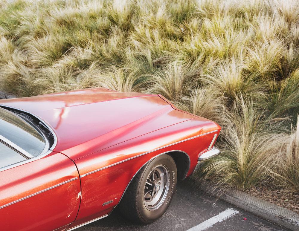 red_car&grass_MGL7941.jpg