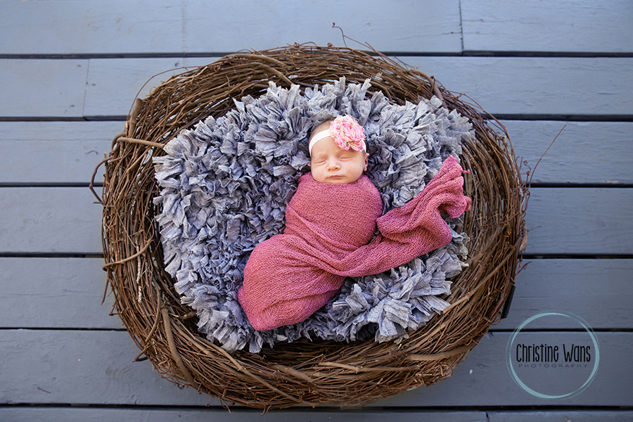 northern New Jersey Newborn Photographer - Christine Wans Photography