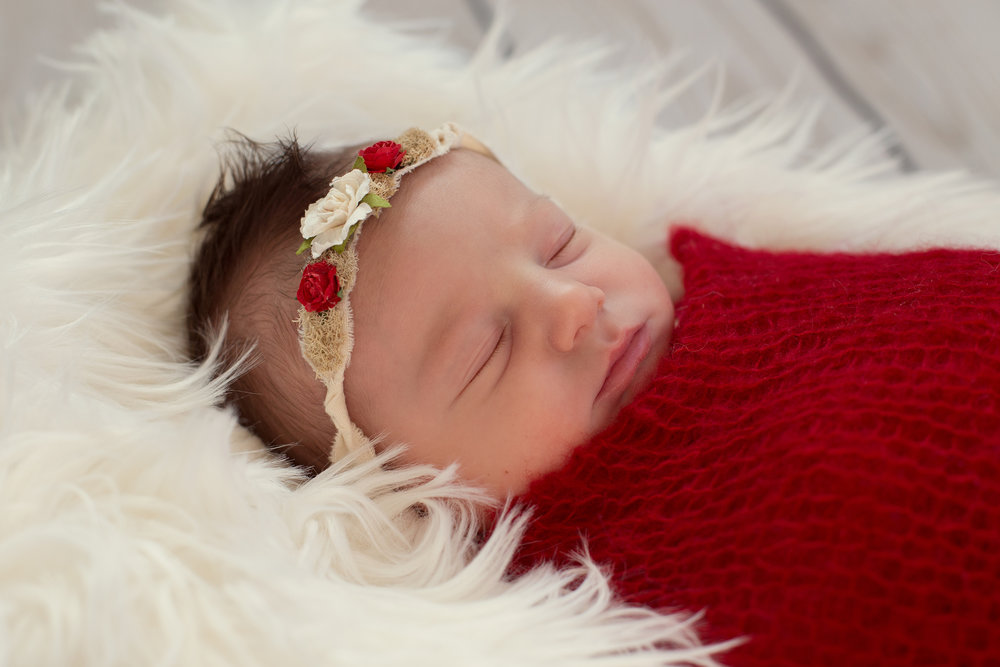 Northern New Jersey Newborn Photographer