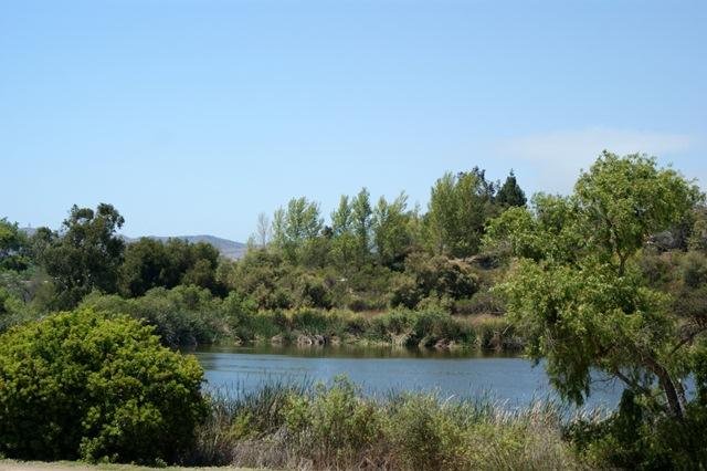 Guajome Regional Park -