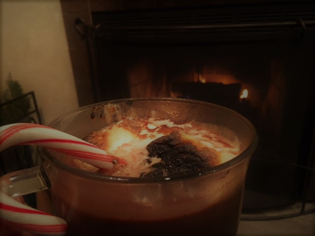 Triple Hot Chocolate with toasted marshmallows in our fireplace room