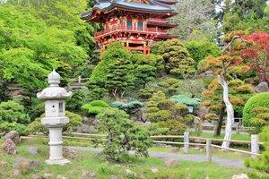 SFO+Japanese+Gardens.jpg