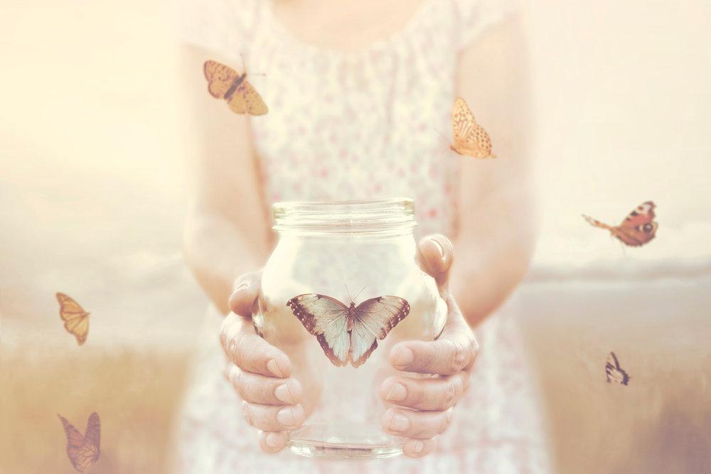 Butterfly in Jar.jpg