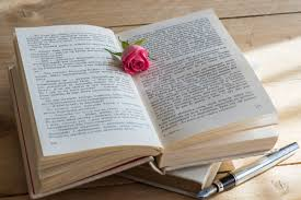rose on a book