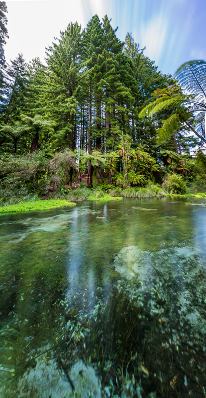 new-zealand-north-island-hamurana-springs-panorama-vertical-amalia-bastos-travel-photographer.jpg