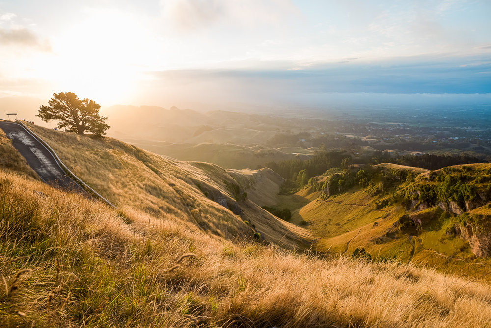 panorama-te-mata-sunset-north-island-new-zealand-amalia-bastos.jpg