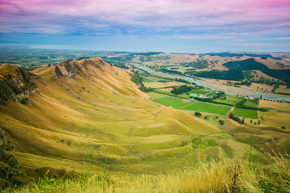 te-mata-peak-napier-new-zealand-roadtrip-north-island-travel-photography-amalia-bastos.jpg