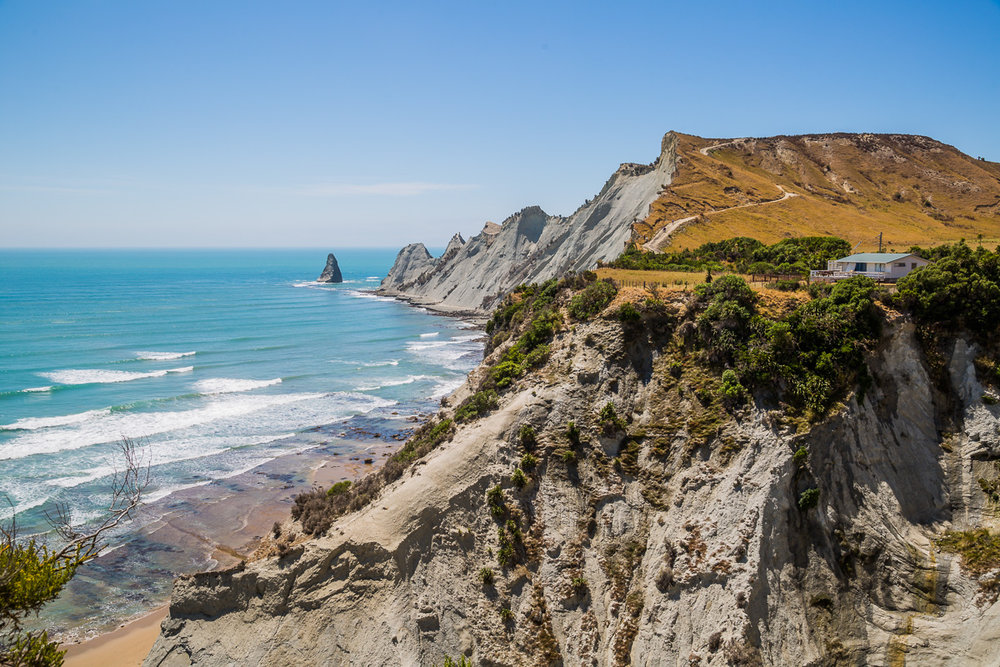 cape-kidnappers-new-zealand-napier-gannet-colony-coast-north-island.jpg