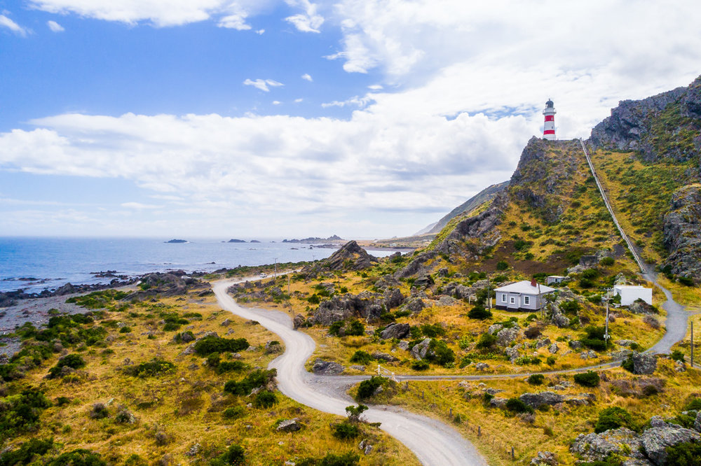 cape-palliser-north-island-suthermost-point-new-zealand-travel-tourism-coast.jpg