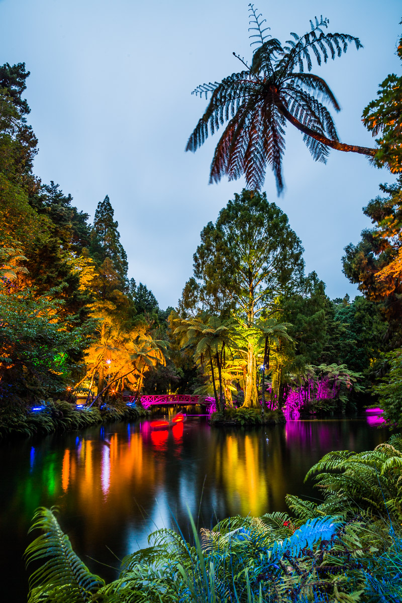 north-island-lights-festival-summer-pukekura-park-events-photographer-amalia-bastos-new-zealand.jpg