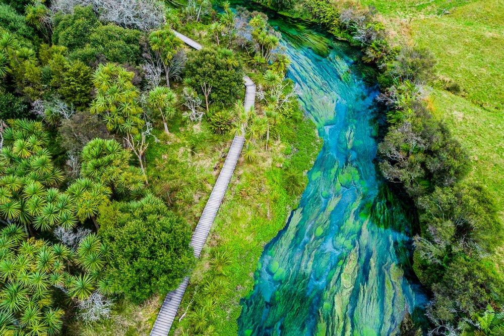 te-waihou-blue-spring-walkway-hamilton-landscape-river-aerial-dji-phantom-4.jpg