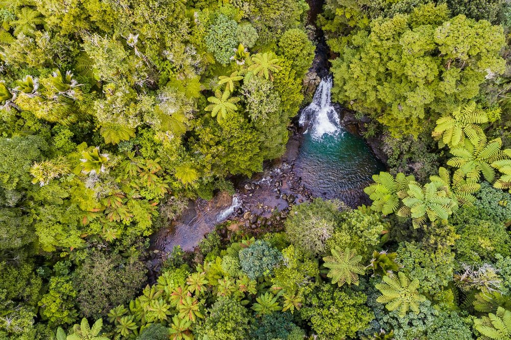 waiau-falls-waterfall-drone-aerial-photography-photographer-new-zealand-north-island-coromandel-roadtrip.jpg