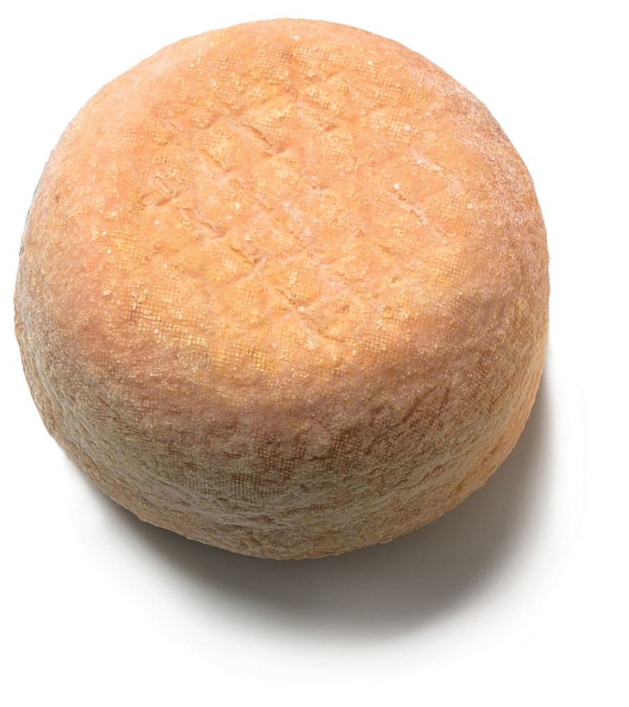 semi-soft-cheese