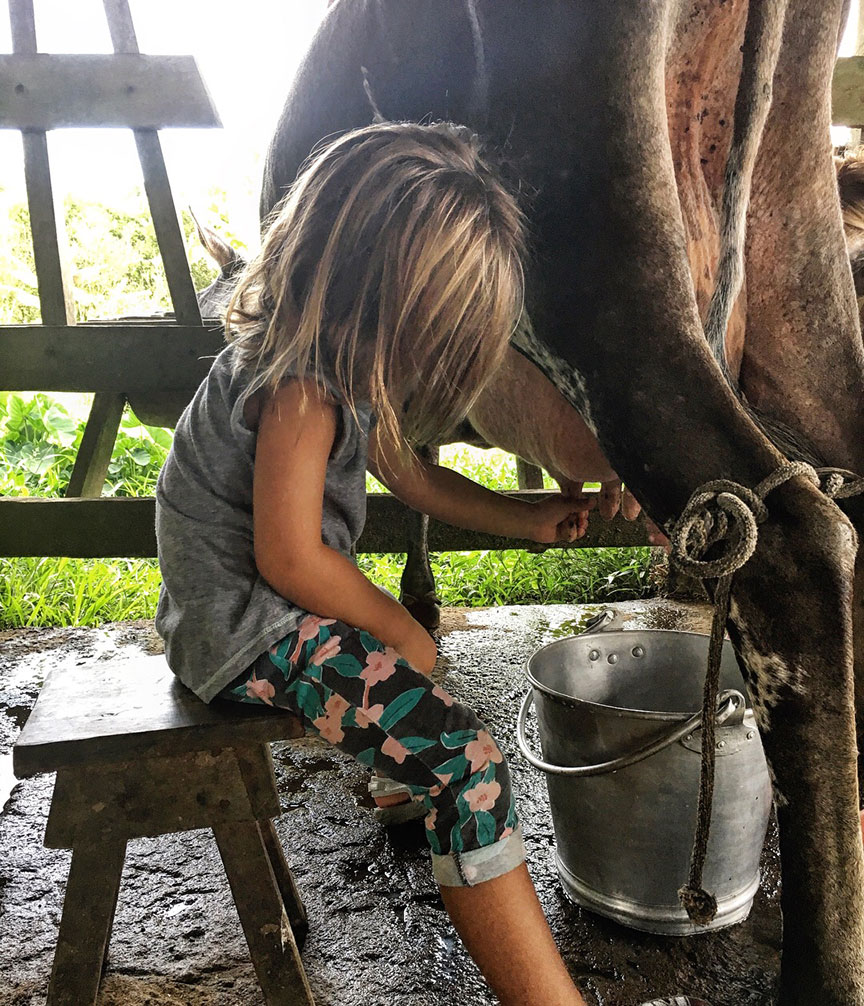 Marynn getting a chance to milk the cows at La Carolina Lodge