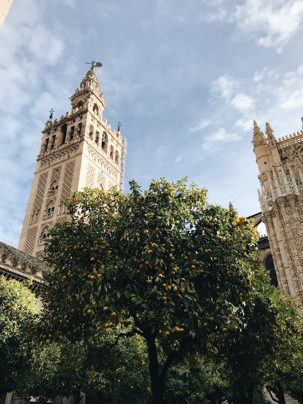 La Giralda, A Long Weekend in Sevilla, Spain | The Most Stunning Sights + Coziest Cafes