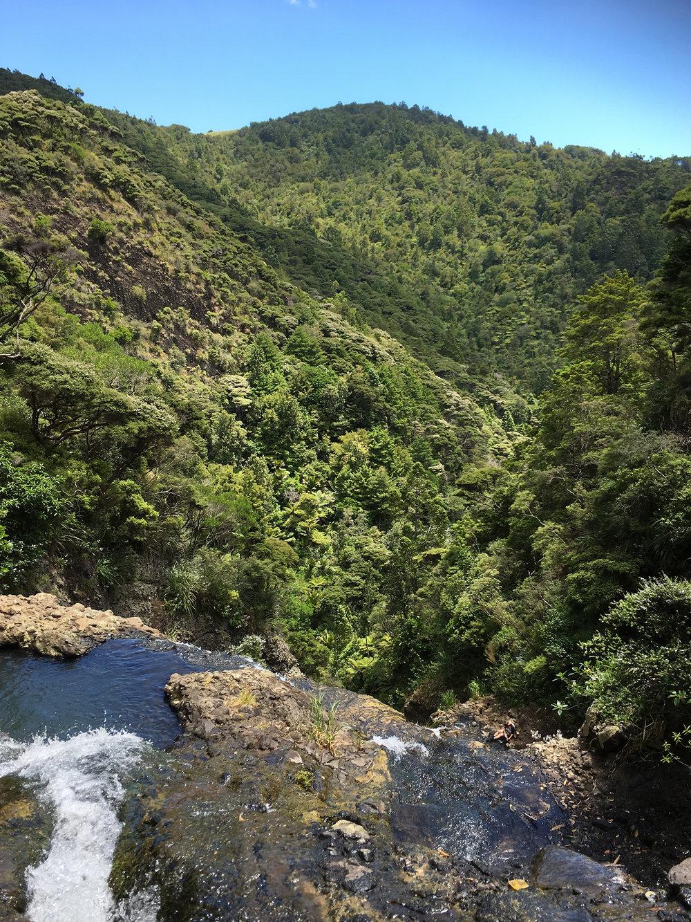 3 | Top of Kitekite Falls, Waitakere Ranges, West Auckland