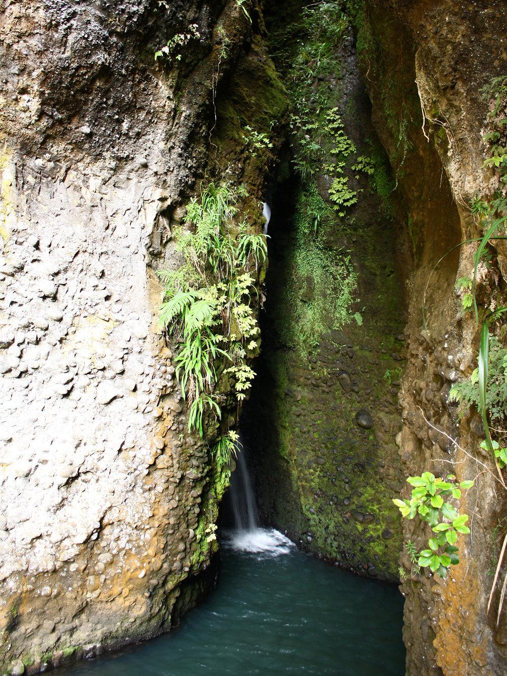5 | Cascade Falls, Waitakere Ranges, West Auckland