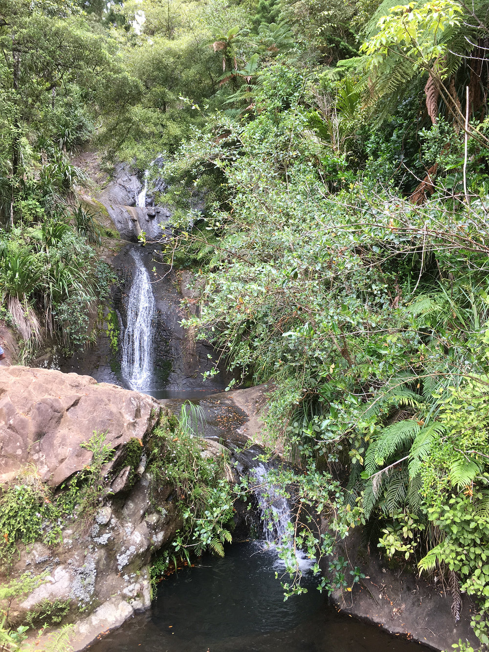 9 | Fairy Falls, Waitakere Ranges, West Auckland