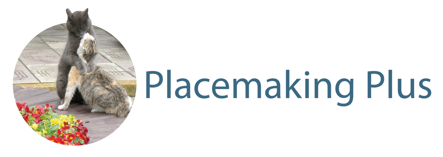 Placemaking Plus