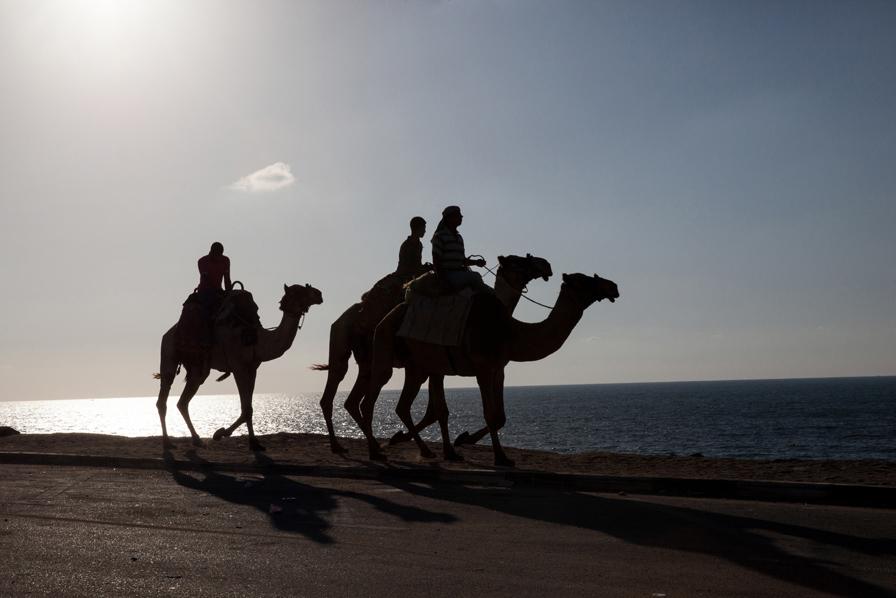 Gaza_City_Corniche-Grey_Hutton_9.jpg