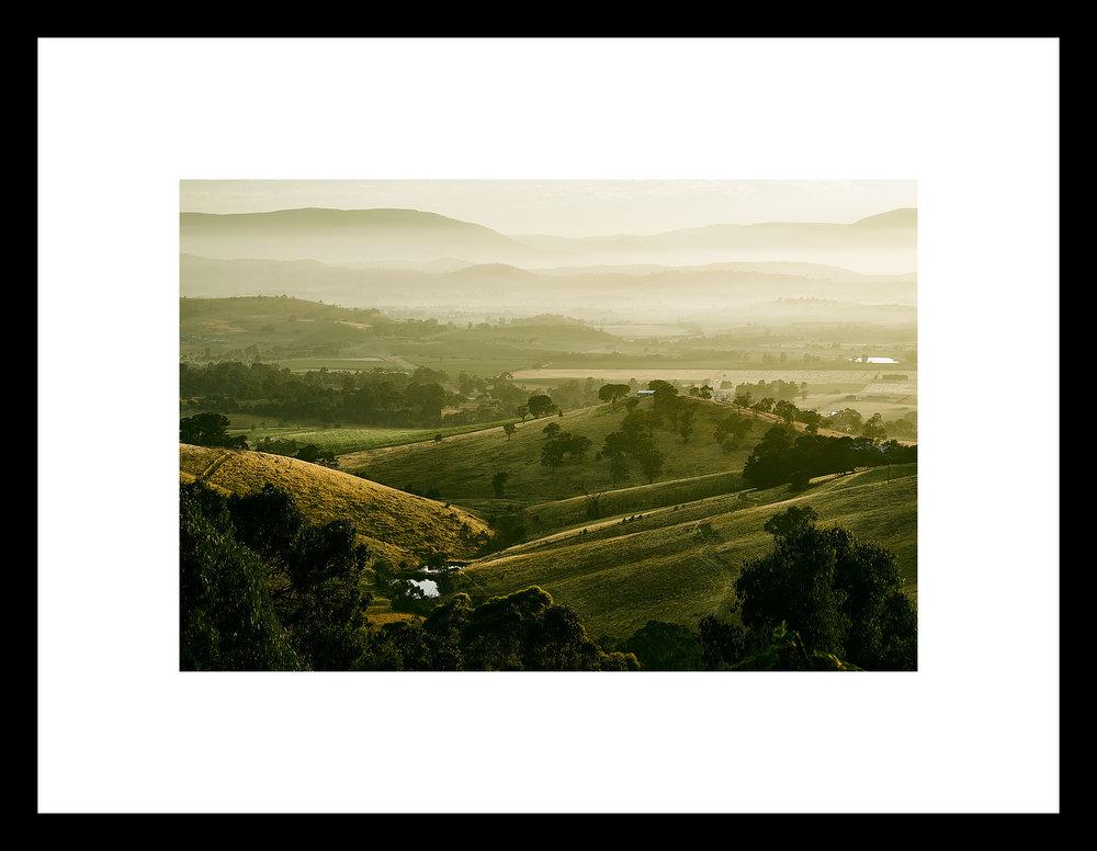 Yarra Valley Dawn