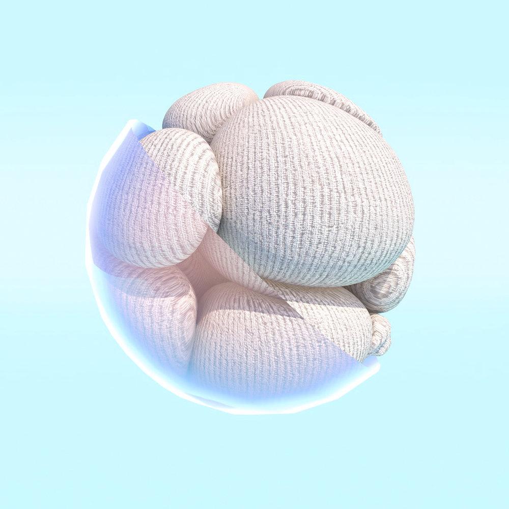 dynamicbody_knit_2.jpg