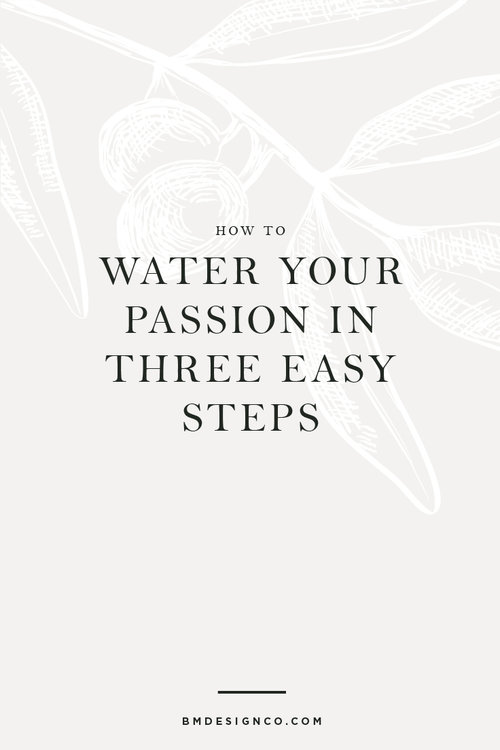How To Water Your Passion In 3 Easy Steps Brock And Mishler Design