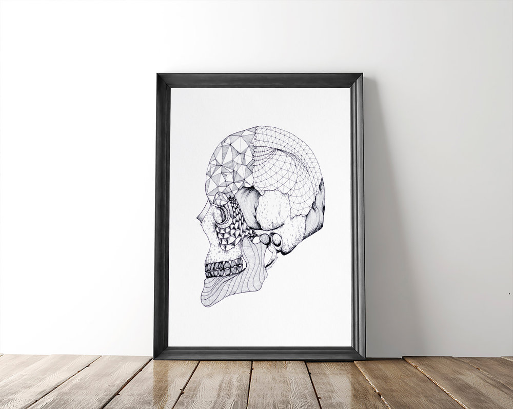 $20   Skull Print