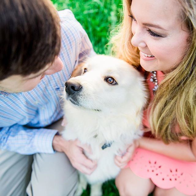 Brides, do you have your Engagement session coming up?! Don't forget your furry babies! They make engagement sessions so fun!