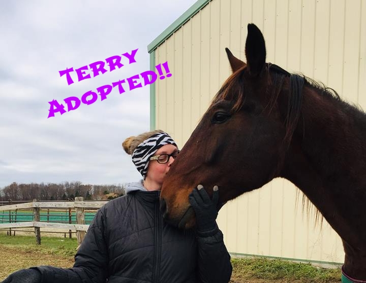 Terry Adopted.jpg